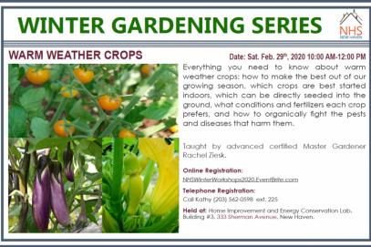 Winter Gardening Series: Warm Weather Crops